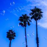 pexels-photo-819807